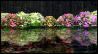Must-See Second Life Art Installation: Hydrangea by Quark Fallen | Culture and Fun - Art | Scoop.it