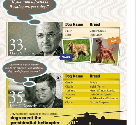 First Dogs & the Presidents, A Visual History [INFOGRAPHIC] - Infographics | data visualization US Election | Scoop.it
