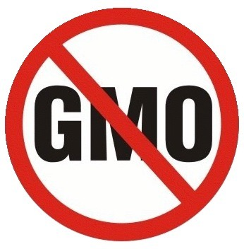 African Civil Society Statement: Call For Ban on GMOs - Petition | YOUR FOOD, YOUR HEALTH: Latest on BiotechFood, GMOs, Pesticides, Chemicals, CAFOs, Industrial Food | Scoop.it