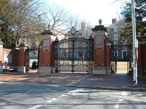 What does a degree mean?  It's hard to tell | Learning & Mind & Brain | Scoop.it