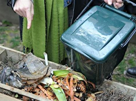 Cleaning up Cairo through compost - Egypt Independent | Local Sustainability | Scoop.it