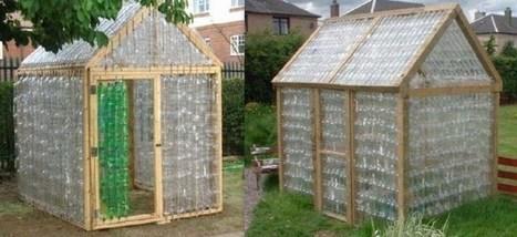 Construire une serre en bouteilles plastique | Au jardin! | Scoop.it