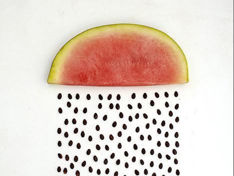 Quand une artiste transforme des fruits et légumes en oeuvres d'art | Curiosités planétaires | Scoop.it