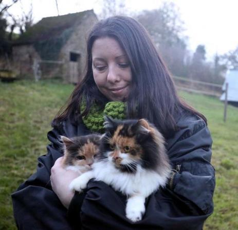 Orne : qui en veut aux chats de Saint-Clair-de-Halouze ? | Des infos sur notre planète : ecologie , biodiversité | Scoop.it