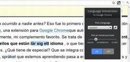 Language Immersion, impresionante extensión de Chrome para aprender idiomas   LAS TIC EN EL COLEGIO   Scoop.it
