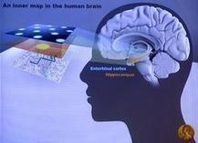 RTL TVI | Des interactions cérébrales anormales nuisent à la conscience, selon une étude de l'ULg | L'actualité de l'Université de Liège (ULg) | Scoop.it