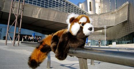 Mozilla défend l'intérêt de l'open source contre la surveillance   OpenData   Scoop.it