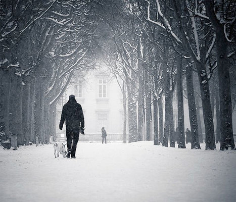 Beautiful Examples of Winter Photography | Inspiration | Inspirational digital photography | Scoop.it