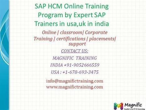 SAP HCM Online Training Program by Expert SAP Trainers in Usa,Uk i.. | onlinetraining | Scoop.it