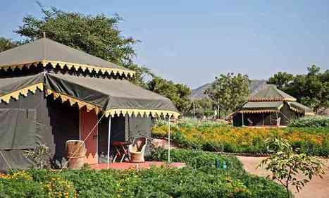 Camps At Pushkar, Camping In Pushkar,Pushkar Safari Camps,Village Camp,Royal Camp,Safari In Pushkar,Pushkar Tent Accomodation,Camel Fair   Picnic Spots   Scoop.it