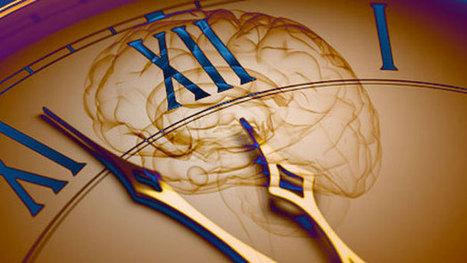 A la naissance, le cerveau subirait une modification de structure | Cognitive Science - Artificial Intelligence | Scoop.it