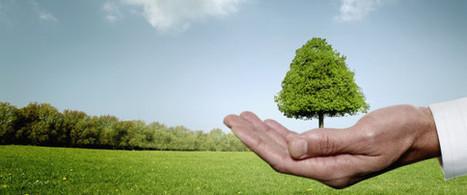 Environnement : ces 7 événements importants de 2014 | Nouveaux comportements & accompagnement aux changements | Scoop.it