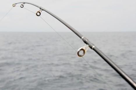 Islamorada Fishing: Enjoy Fishing Charters and the Variety of Catch   Islamorada Fishing Source   Scoop.it