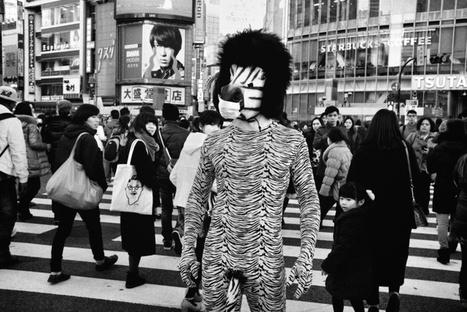 Portrait du street photographe Tatsuo Suzuki   Exposition Photographie   Scoop.it