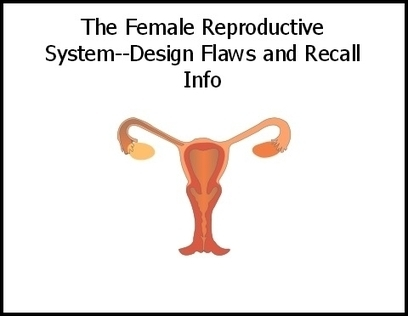 Female Reproductive System--Design Flaws and Recall Info | Aging | Scoop.it