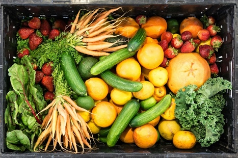 "What Does a National Call For Food Waste Reduction Mean? (""a timely movement for lifestyle change"") 