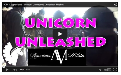 OP: Copperhead - Unicorn Unleashed (American Milsim) - on YouTube | Thumpy's 3D House of Airsoft™ @ Scoop.it | Scoop.it