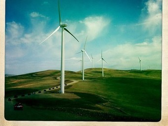 Mongolia hosts World Environment Day to highlight sustainable future | Sustain Our Earth | Scoop.it