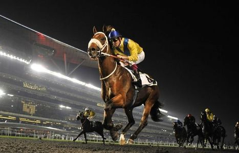 Luxurious Holiday in Dubai, Come In 2014 Dubai World Cup | Horse Racing | Scoop.it