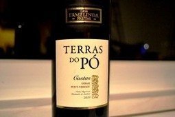 Terras do Pó Castas Syrah Petit Verdot 2009 | Papel | Wine Lovers | Scoop.it
