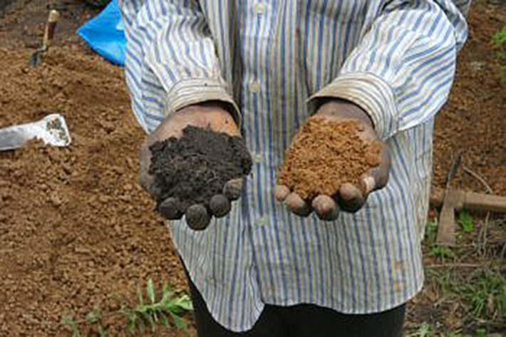 700 year old fertile soil technique could mitigate climate change and revolutionise farming across Africa | The Archaeology News Network | Afrique | Scoop.it