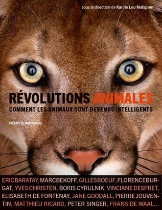 Révolutions animales.Comment les animaux sont devenus intelligents - Karine Lou Matignon (Ed.) - Les liens qui libèrent/Arte   Parution d'ouvrages   Scoop.it