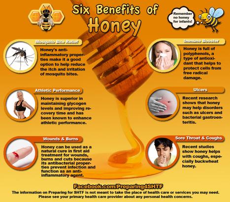 Six Benefits of Honey Infographic - Preparing For SHTF   Survival Infographics   Scoop.it