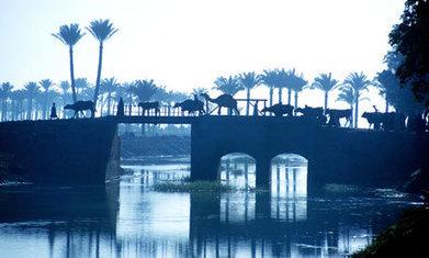 L'Ethiopie rejette les protestations égyptiennes à propos du grand barrage sur le Nil | Égypt-actus | Scoop.it