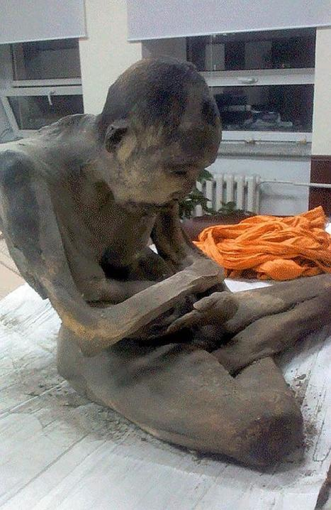 200-year-old Mongolian mummy may still be 'alive' according to Buddhist academic | Ancient History - Amplectentem Tempus et Mutatio | Scoop.it