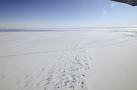 A Crack in the Pine Island Glacier Ice Shelf | Planets, Stars, rockets and Space | Scoop.it