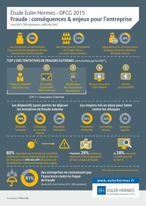 infographie-fraude-entreprise-2015[1].jpg (1200×1697) | Intelligence economique et stratégique | Scoop.it