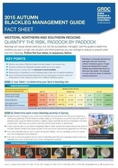Blackleg Management Guide Fact Sheet - Grains Research & Development Corporation | Plant Pathology | Scoop.it