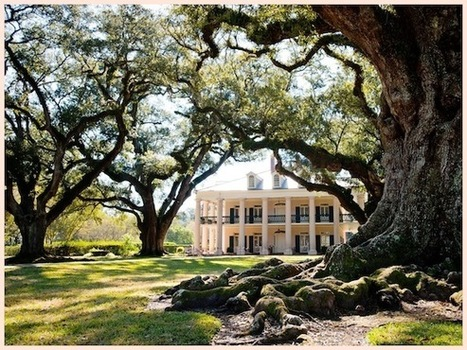Real Wedding | Gina + Jim | PreOwned Wedding Dresses | Oak Alley Plantation: Things to see! | Scoop.it