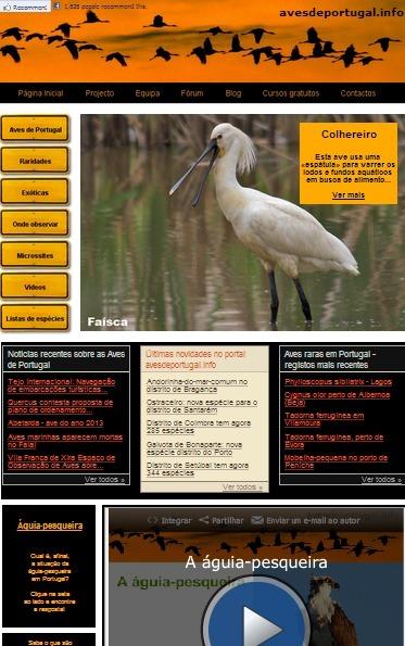 Aves de Portugal - O Portal dos Observadores de Aves | Ciências Naturais | Scoop.it