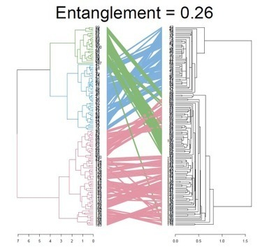The dendextend package for visualizing and comparing trees of hierarchical clusterings (slides from useR!2014) | Big Data, Statistics and Machine Learning | Scoop.it