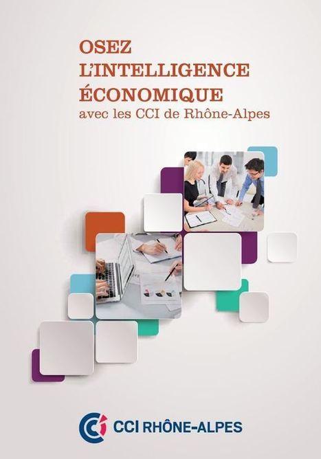 Les CCI de Rhône-Alpes «osent l'Intelligence Économique» | Vedocci | Découverte | Scoop.it