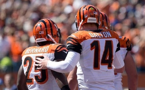NFL Grades Week 2: Andy Dalton, Bengals might be best in AFC - CBSSports.com   NFL - National Football League   Scoop.it