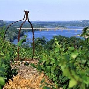 Trois nouveaux crus en Muscadet ! Vignobles et vins en France - La Revue du vin de France | Vins de Loire | Scoop.it