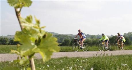 Une carte des véloroutes, une seule - ALSACE | Cyclotourisme - véloroutes et voies vertes | Scoop.it
