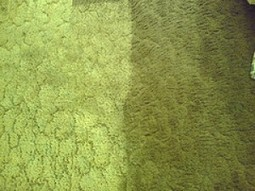 Check Before You Hire A Local Carpet Cleaning Company - OnToplist.com | Home and Garden | Scoop.it
