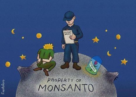 [VIDÉO] Comprendre Monsanto en moins de 3 minutes | Des infos sur notre planète : ecologie , biodiversité | Scoop.it