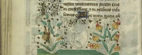 La pépite du mois de Novembre à la Médiathèque de Saint-Malo | Rhit Genealogie | Scoop.it