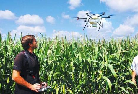 All you want to know about drones and farming in Ireland | Drone in Agriculture | Scoop.it