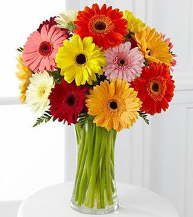 12pcs Colorful Gerberas Bouquet delivers to your Friends on Friendship Day – Colorful_Gerberas_Bouquets#007 | mother's day flower | Scoop.it