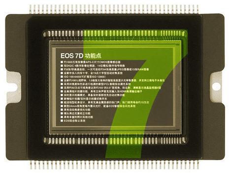 New Canon EOS 7D Mark II Rumor | Gear in Motion | Scoop.it