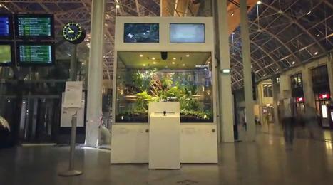 La gare Paris Gare-de-Lyon transformé en vivarium géant | streetmarketing | Scoop.it