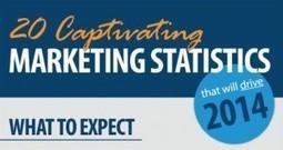 Infographie webmarketing : 20 statistiques à connaitre pour 2014   Valérie Verpoest - Reputation VIP   Scoop.it