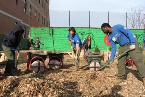 Non-profits helping NYers turn abandoned lots into gardens | Community Gardening Resources | Scoop.it