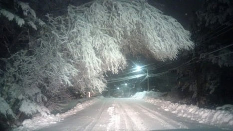 Aftermath of nor'easter leaves thousands without electricity | NovaScotia News | Scoop.it