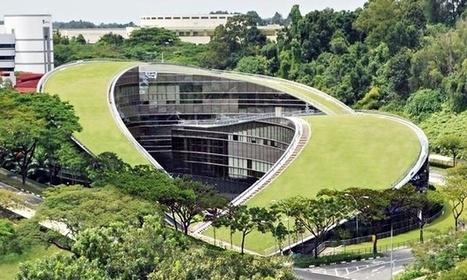 Asian universities take top five spots in list of top 50 universities under 50   SCUP   Scoop.it